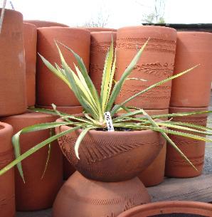 Little baja garden deck and patio decor portland or for Little baja pottery